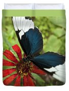 Butterfly Sara Longwing II Duvet Cover