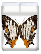 Butterfly Species Cyrestis Lutea Martini Duvet Cover