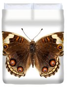 Butterfly Species Junonia Orithya  Duvet Cover