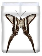 Butterfly Species Lamproptera Curius  Duvet Cover