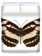 Butterfly Species Neptis Hylas  Duvet Cover