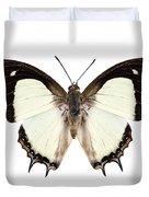 Butterfly Species Polyura Jalysus Duvet Cover