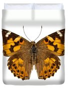 Butterfly Species Vanessa Cardui  Duvet Cover