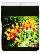 Butterfly Weed 2 Duvet Cover