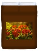 Butterfly Weed In The Sunset Duvet Cover