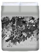 Bw Hanging Thompson Grapes Sultana Poster Look Duvet Cover