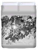 Bw Lens Flare Hanging Thompson Grapes Sultana Duvet Cover