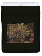 Cacti Along The Garden Wall Duvet Cover