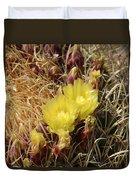 Cactus Flower In Bloom Duvet Cover