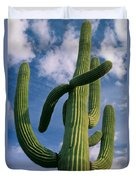 Cactus In The Clouds Duvet Cover