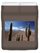 Cactus With The Andes Mountains Duvet Cover