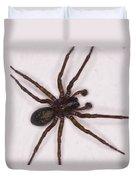 Caffeine Crazed Arachnoid Duvet Cover