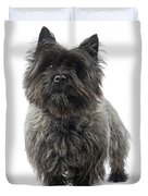 Cairn Terrier Dog Duvet Cover