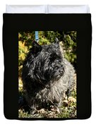 Cairn Terrier Portrait Duvet Cover