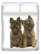 Cairn Terriers Duvet Cover