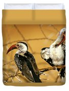 Calao A Bec Rouge Tockus Erythrorhynchus Duvet Cover