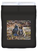 Calico Cat And Obtuse Owl Duvet Cover by Al Powell Photography USA