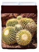 California Barrel Cactus Duvet Cover