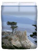 California Bonsai Duvet Cover