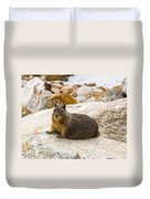 California Ground Squirrel With Sandy Nose Duvet Cover