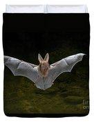 California Leaf-nosed Bat Duvet Cover