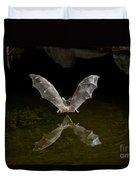 California Long-nosed Bat Flying Away Duvet Cover