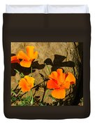 California Poppies - Crisp Shadows From The Desert Sun  Duvet Cover