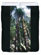 California Redwood Duvet Cover