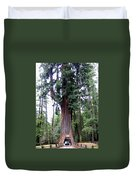 California Redwoods 6 Duvet Cover