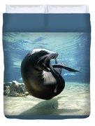 California Sea Lion Yawning Duvet Cover by Hiroya Minakuchi