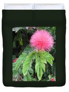Calliandra Blossom Duvet Cover
