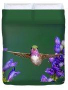 Calliope Hummingbird Stellula Calliope Duvet Cover