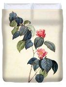 Camellia Japonica Duvet Cover by Pierre Joseph Redoute