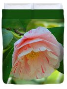 Camellia White With Pink Stripes Duvet Cover