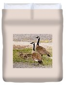 Canada Geese And Goslings Duvet Cover