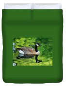 Canada Goose On Green Pond Duvet Cover