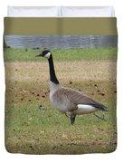 Canadian Goose Strut Duvet Cover