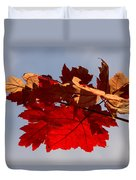 Canadian Maple Leaves In The Fall Duvet Cover