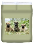 Canary Dog Puppies Duvet Cover
