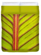 Canna Lily Red Stripe  Duvet Cover
