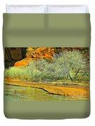 Canyon De Chelly - Spring I Duvet Cover