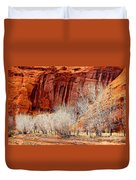 Canyon De Chelly - Spring II Duvet Cover