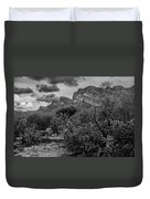 Canyon Del Oro No.48 Duvet Cover
