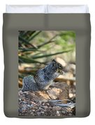 Canyon Squirrel Duvet Cover