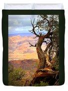 Canyon Vista 1 Duvet Cover