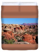 Canyonlands National Park Duvet Cover