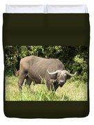 Cape Buffalo  Uganda Duvet Cover