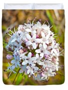 Capitate Valerian Near Savage River Cabin In Denali Np-ak Duvet Cover