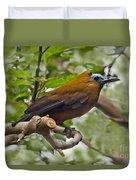 Capuchinbird Duvet Cover