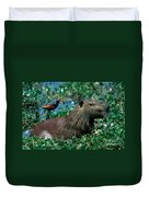 Capybara And Jacana Duvet Cover by Francois Gohier